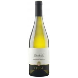 Ribolla Gialla Collio Fiegl 2019 0,75 lt.