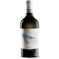 Trebbiano d\'Abruzzo Bio Vegan Cantina Tollo 2019 0,75 lt.